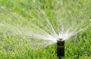 irrigation sprinkler popup