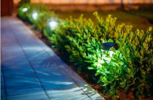Low-Voltage Landscape Lighting