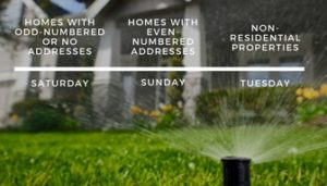 watering days for irrigation system