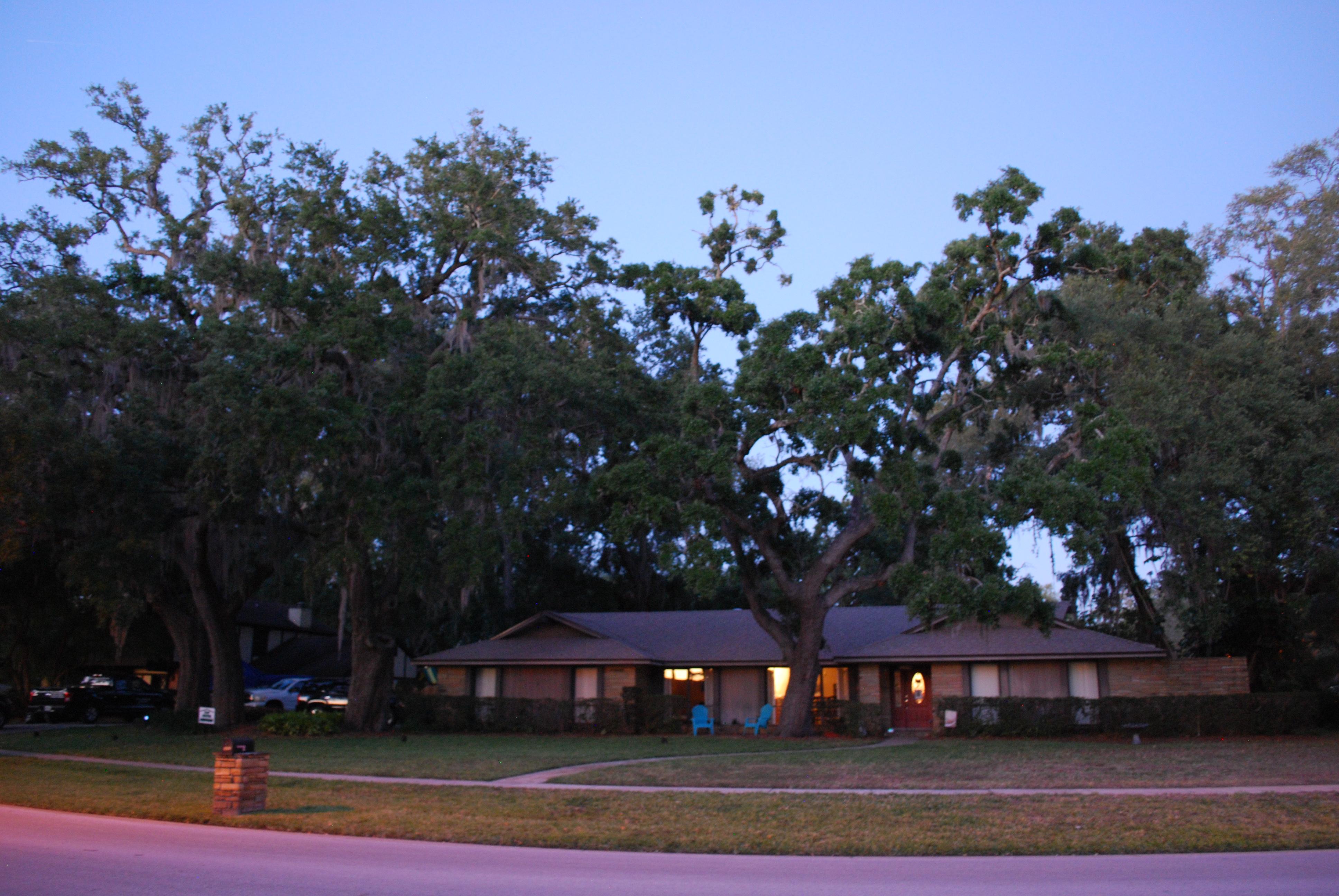 Residential home exterior landscape lighting