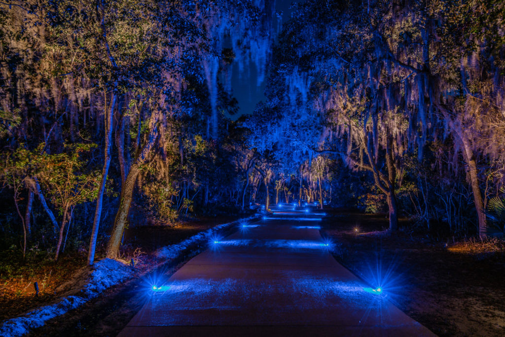 residential landscape lighting blue driveway