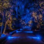 residential landscape lighting blue driveway
